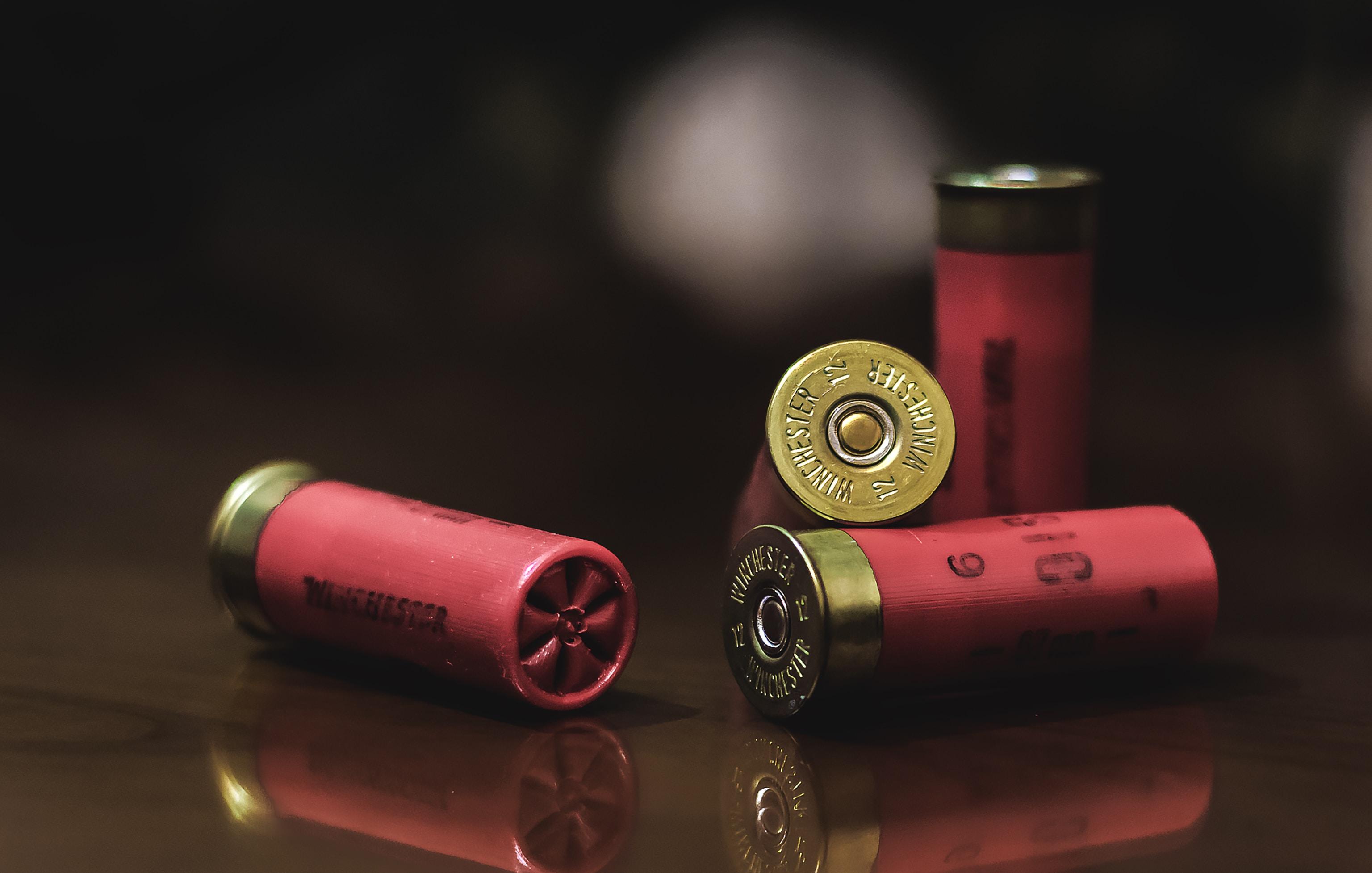 MONDE – Les États-fusils d'Amérique
